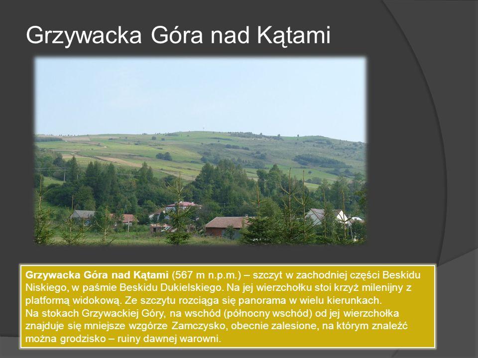 Grzywacka Góra nad Kątami Grzywacka Góra nad Kątami (567 m n.p.m.) – szczyt w zachodniej części Beskidu Niskiego, w paśmie Beskidu Dukielskiego. Na je