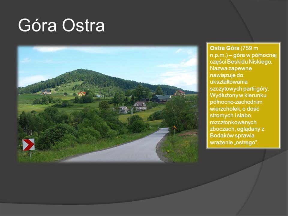 Góra Ostra Ostra Góra (759 m n.p.m.) – góra w północnej części Beskidu Niskiego. Nazwa zapewne nawiązuje do ukształtowania szczytowych partii góry. Wy