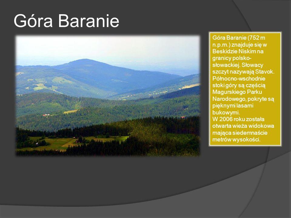 Góra Baranie Góra Baranie (752 m n.p.m.) znajduje się w Beskidzie Niskim na granicy polsko- słowackiej. Słowacy szczyt nazywają Stavok. Północno-wscho