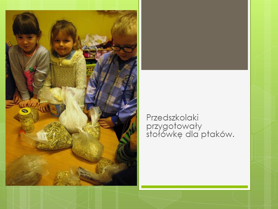 Przedszkolaki przygotowały stołówkę dla ptaków.