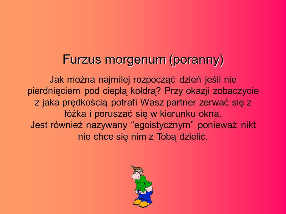 Furzus morgenum (poranny) Jak można najmilej rozpocząć dzień jeśli nie pierdnięciem pod ciepłą kołdrą.