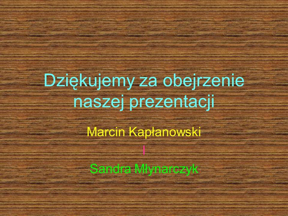 Dziękujemy za obejrzenie naszej prezentacji Marcin Kapłanowski I Sandra Młynarczyk