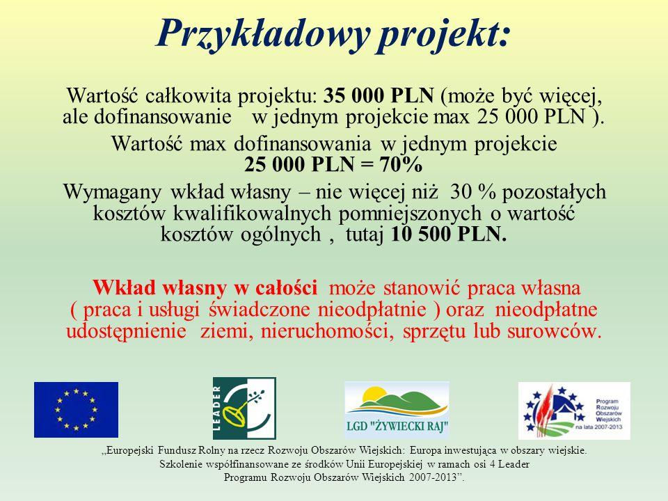 Przykładowy projekt: Wartość całkowita projektu: 35 000 PLN (może być więcej, ale dofinansowanie w jednym projekcie max 25 000 PLN ).