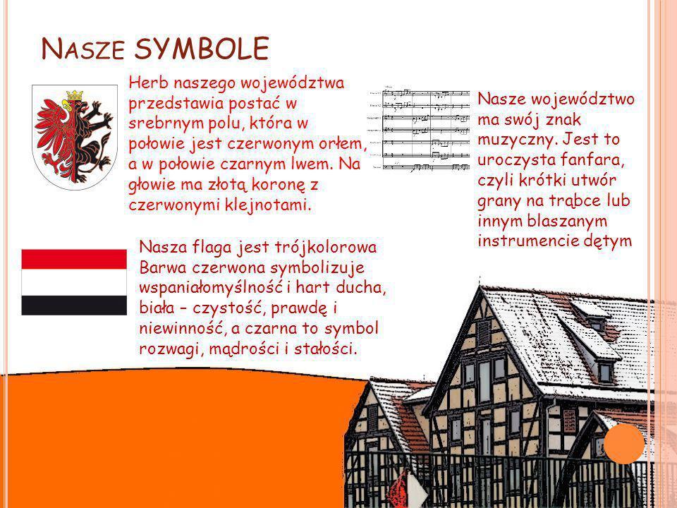 N ASZE SYMBOLE Herb naszego województwa przedstawia postać w srebrnym polu, która w połowie jest czerwonym orłem, a w połowie czarnym lwem.