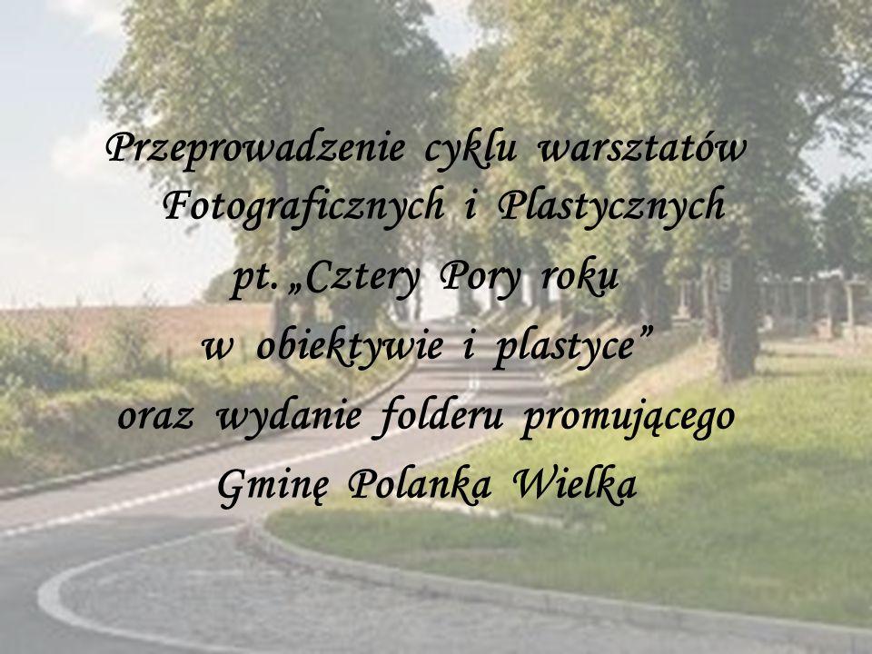Przeprowadzenie cyklu warsztatów Fotograficznych i Plastycznych pt.