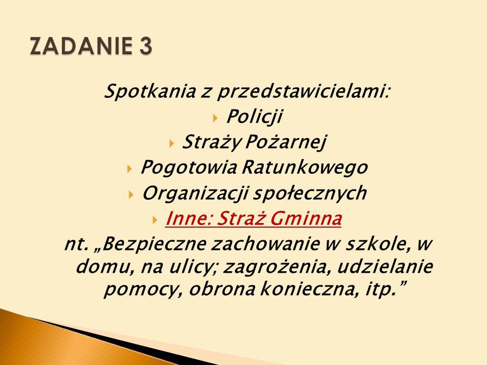 Spotkania z przedstawicielami:  Policji  Straży Pożarnej  Pogotowia Ratunkowego  Organizacji społecznych  Inne: Straż Gminna nt.
