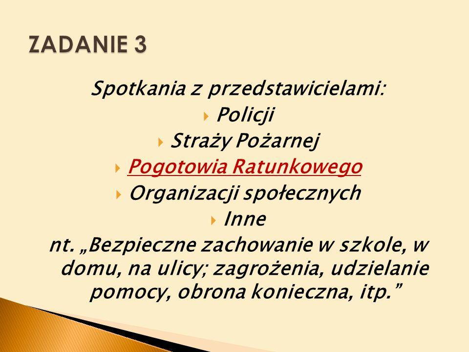 Spotkania z przedstawicielami:  Policji  Straży Pożarnej  Pogotowia Ratunkowego  Organizacji społecznych  Inne nt.