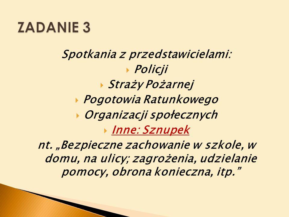 Spotkania z przedstawicielami:  Policji  Straży Pożarnej  Pogotowia Ratunkowego  Organizacji społecznych  Inne: Sznupek nt.