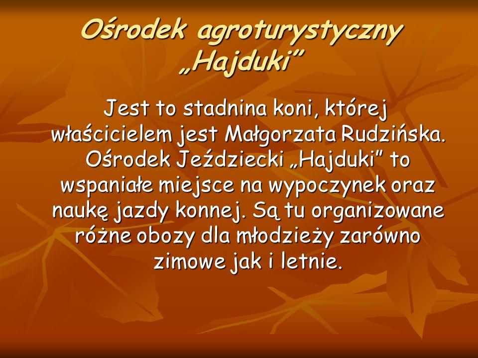"""Ośrodek agroturystyczny """"Hajduki"""" Jest to stadnina koni, której właścicielem jest Małgorzata Rudzińska. Ośrodek Jeździecki """"Hajduki"""" to wspaniałe miej"""