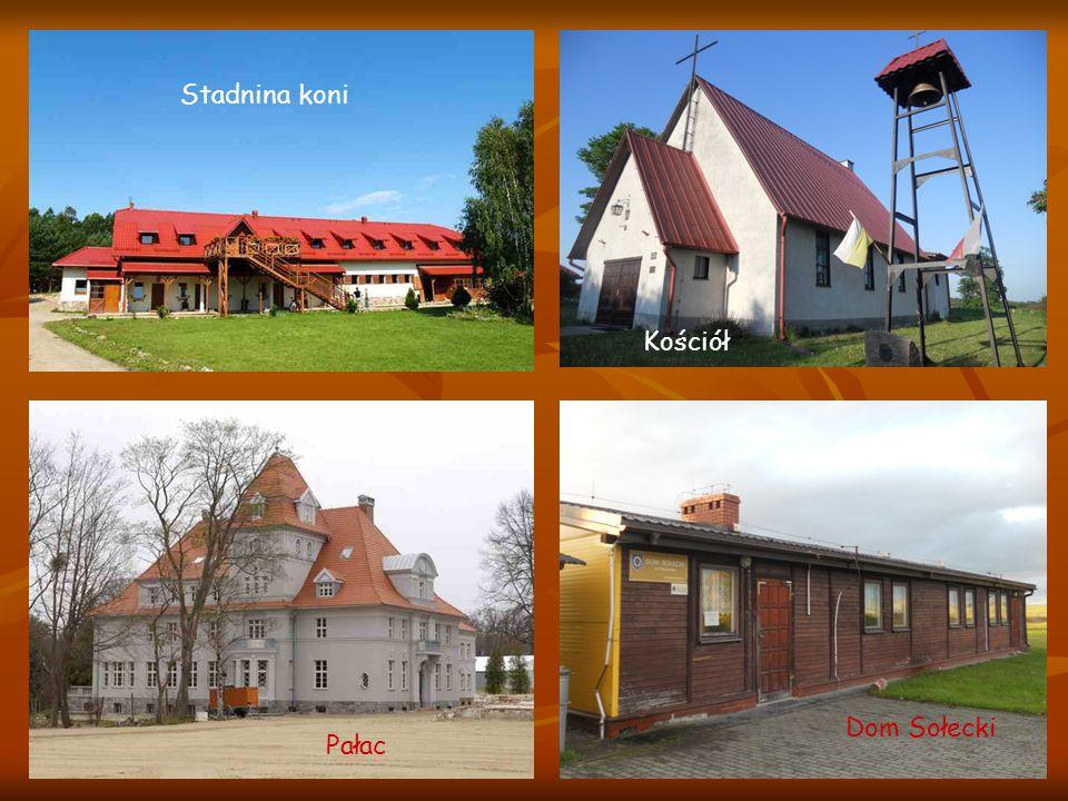 Pałac w Chynowiu Powstał w połowie XVIII wieku.