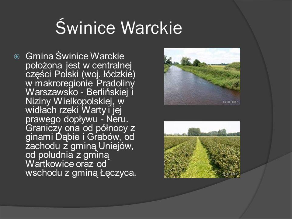 Świnice Warckie  Gmina Świnice Warckie położona jest w centralnej części Polski (woj.