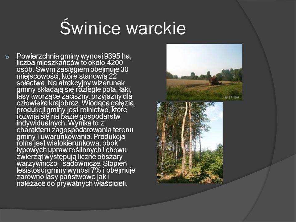 Świnice warckie  Powierzchnia gminy wynosi 9395 ha, liczba mieszkańców to około 4200 osób.