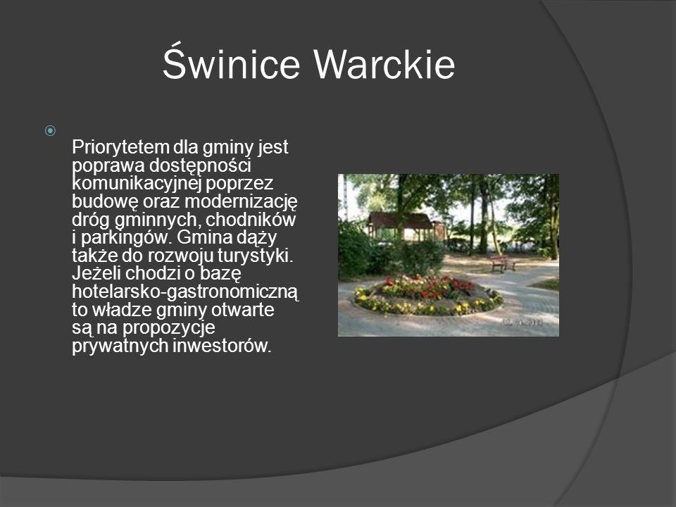 Świnice Warckie  Priorytetem dla gminy jest poprawa dostępności komunikacyjnej poprzez budowę oraz modernizację dróg gminnych, chodników i parkingów.