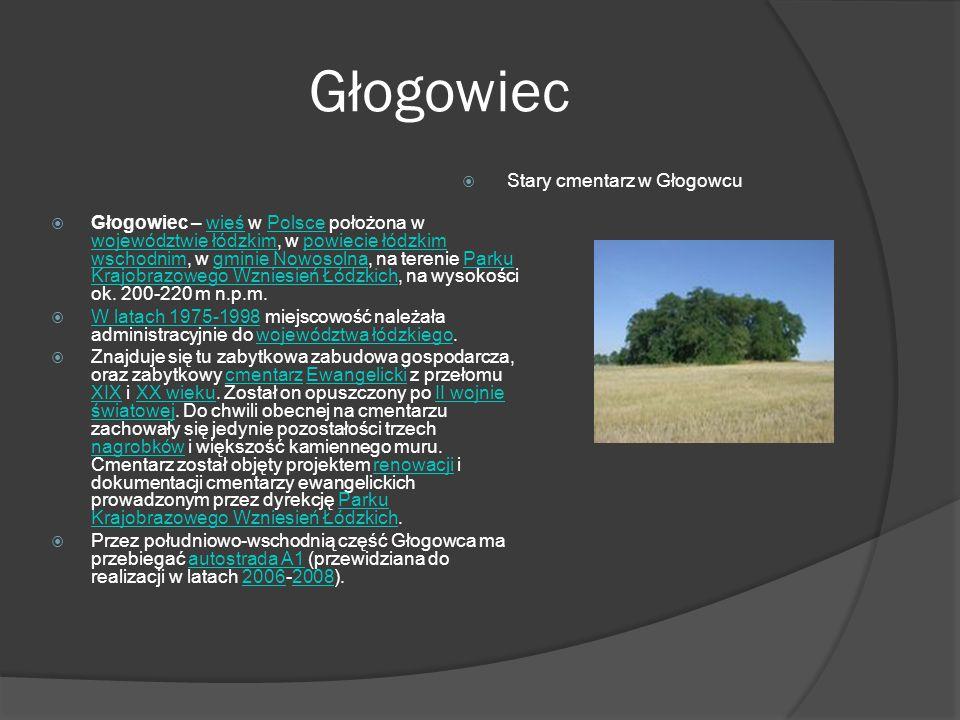 Głogowiec  Głogowiec – wieś w Polsce położona w województwie łódzkim, w powiecie łódzkim wschodnim, w gminie Nowosolna, na terenie Parku Krajobrazowego Wzniesień Łódzkich, na wysokości ok.