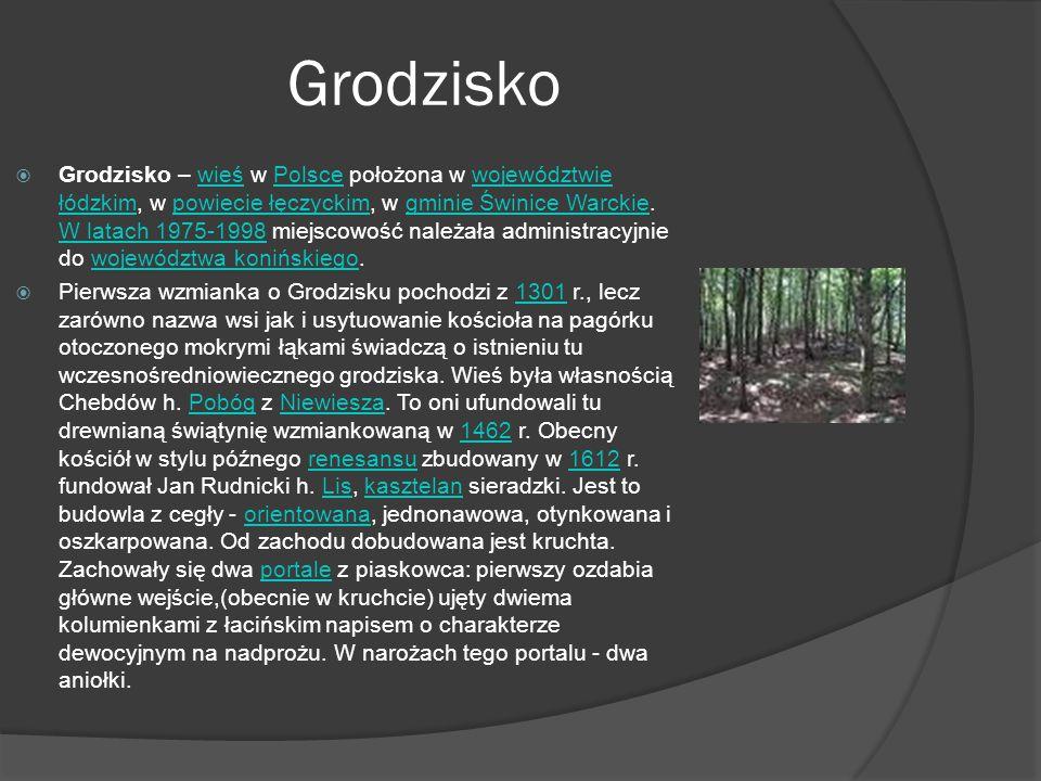 Grodzisko  Grodzisko – wieś w Polsce położona w województwie łódzkim, w powiecie łęczyckim, w gminie Świnice Warckie.