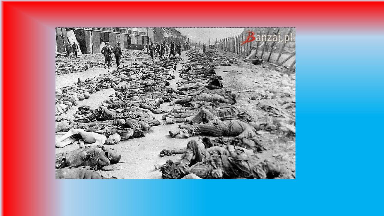 Obozy niemieckie Obozy niemieckie 1933–1945 – obozy i podobozy kierowane przez SA, a później SS, policję i Wehrmacht utworzone w latach 1933–1945 prze