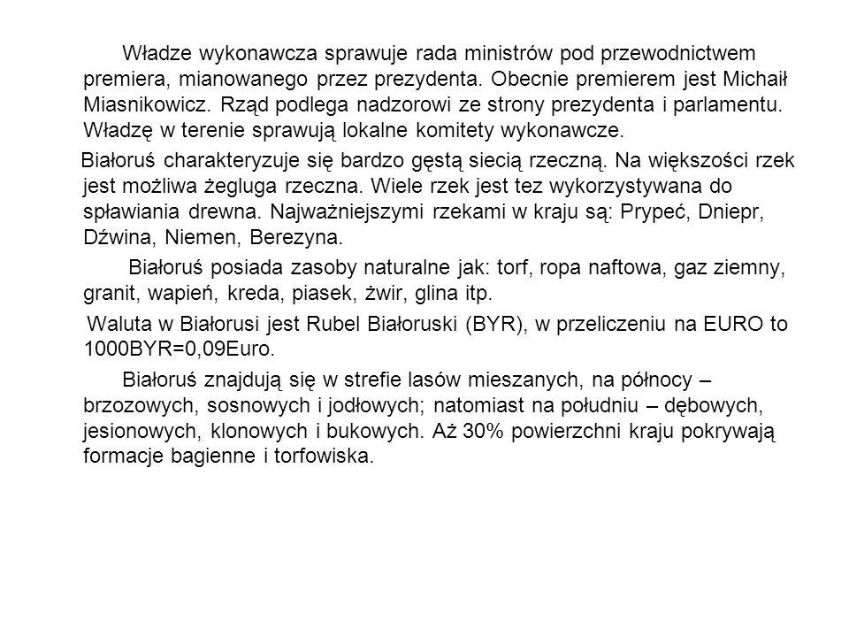 Władze wykonawcza sprawuje rada ministrów pod przewodnictwem premiera, mianowanego przez prezydenta. Obecnie premierem jest Michaił Miasnikowicz. Rząd