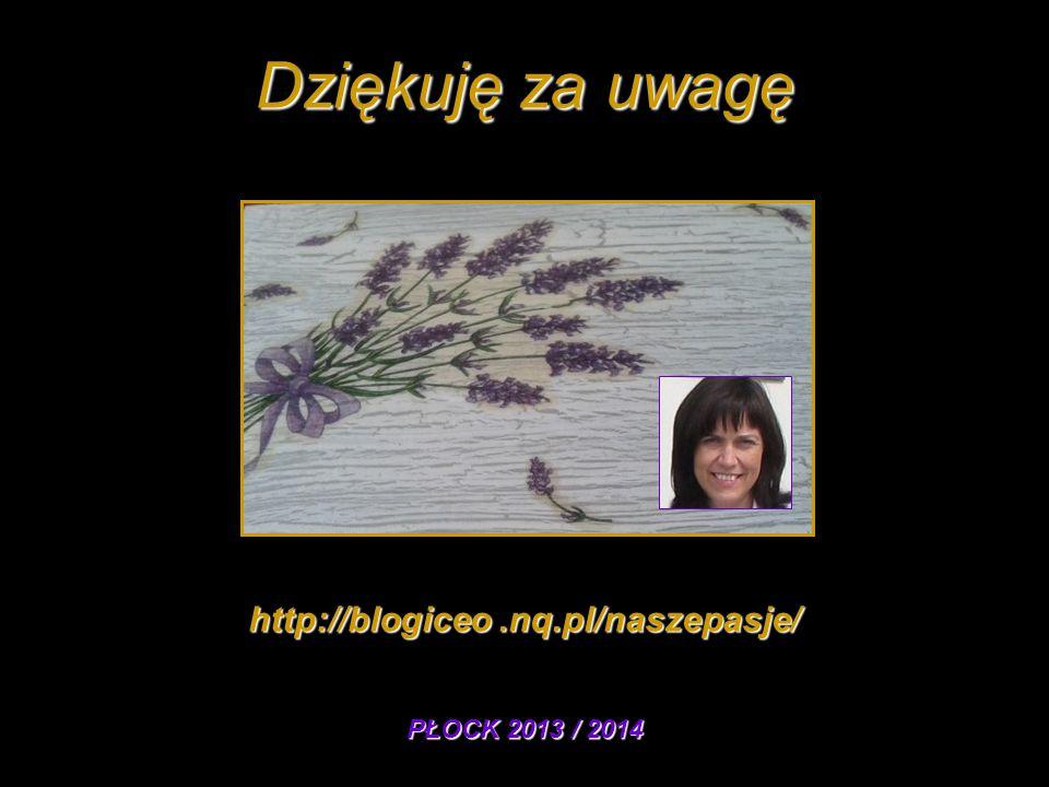 Dziękuję za uwagę http://blogiceo.nq.pl/naszepasje/ PŁOCK 2013 / 2014