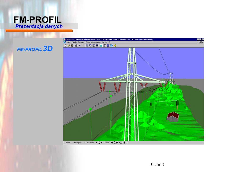 Strona 19 FM-PROFIL 3D Prezentacja danych FM-PROFIL