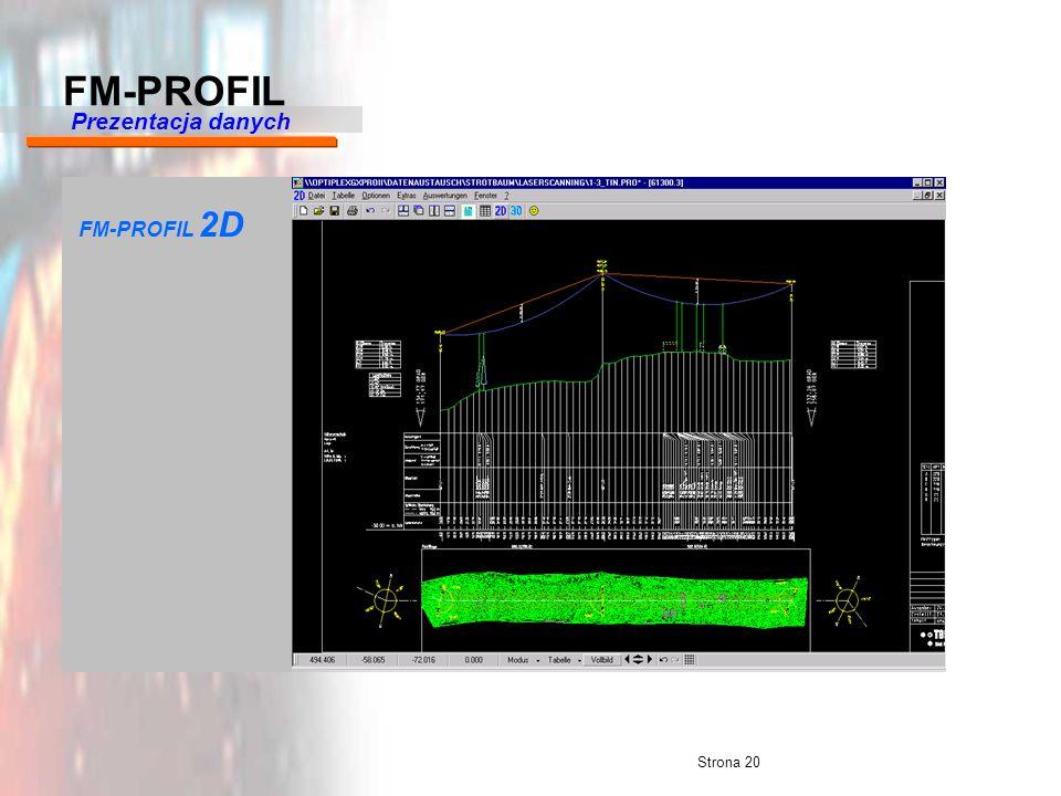 Strona 20 FM-PROFIL 2D Prezentacja danych FM-PROFIL