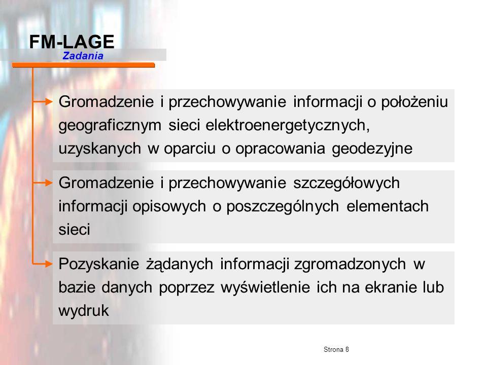 Strona 8 Gromadzenie i przechowywanie informacji o położeniu geograficznym sieci elektroenergetycznych, uzyskanych w oparciu o opracowania geodezyjne