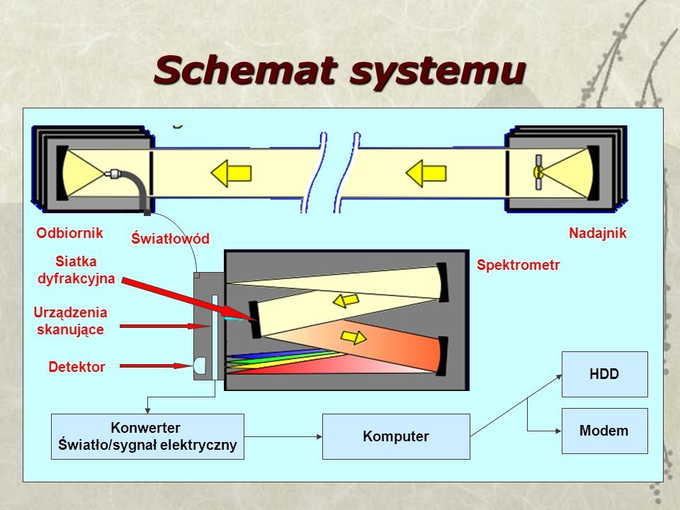 20 Schemat systemu Konwerter Światło/sygnał elektryczny Komputer HDD Spektrometr Modem Detektor Urządzenia skanujące Siatka dyfrakcyjna Światłowód NadajnikOdbiornik