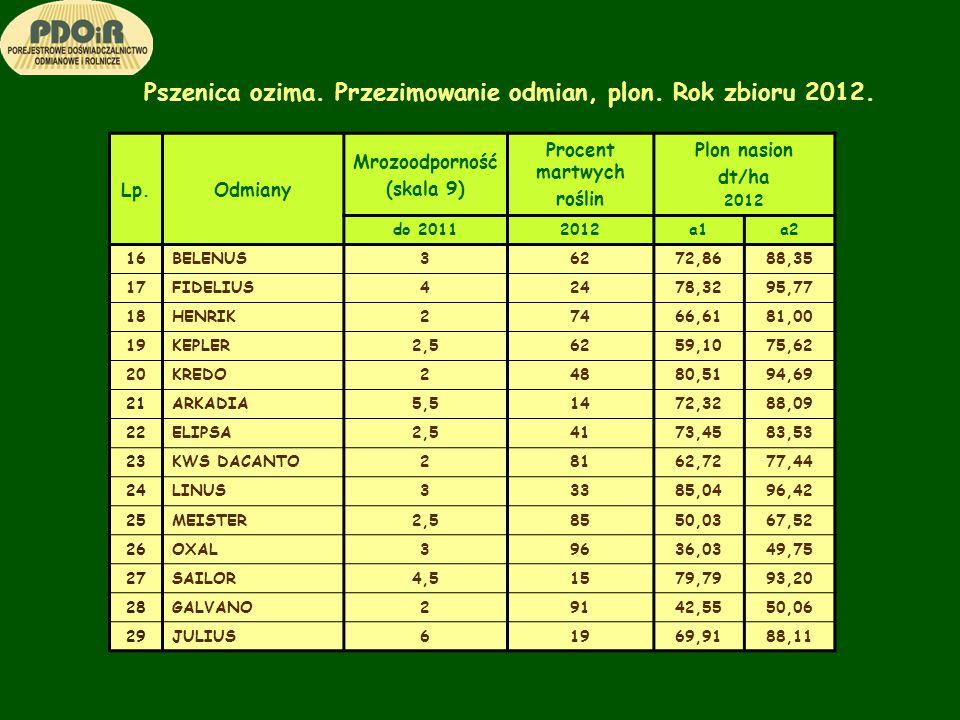Pszenica ozima. Przezimowanie odmian, plon. Rok zbioru 2012. Lp.Odmiany Mrozoodporność (skala 9) Procent martwych roślin Plon nasion dt/ha 2012 do 201