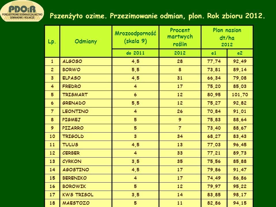 Pszenżyto ozime. Przezimowanie odmian, plon. Rok zbioru 2012. Lp.Odmiany Mrozoodporność (skala 9) Procent martwych roślin Plon nasion dt/ha 2012 do 20