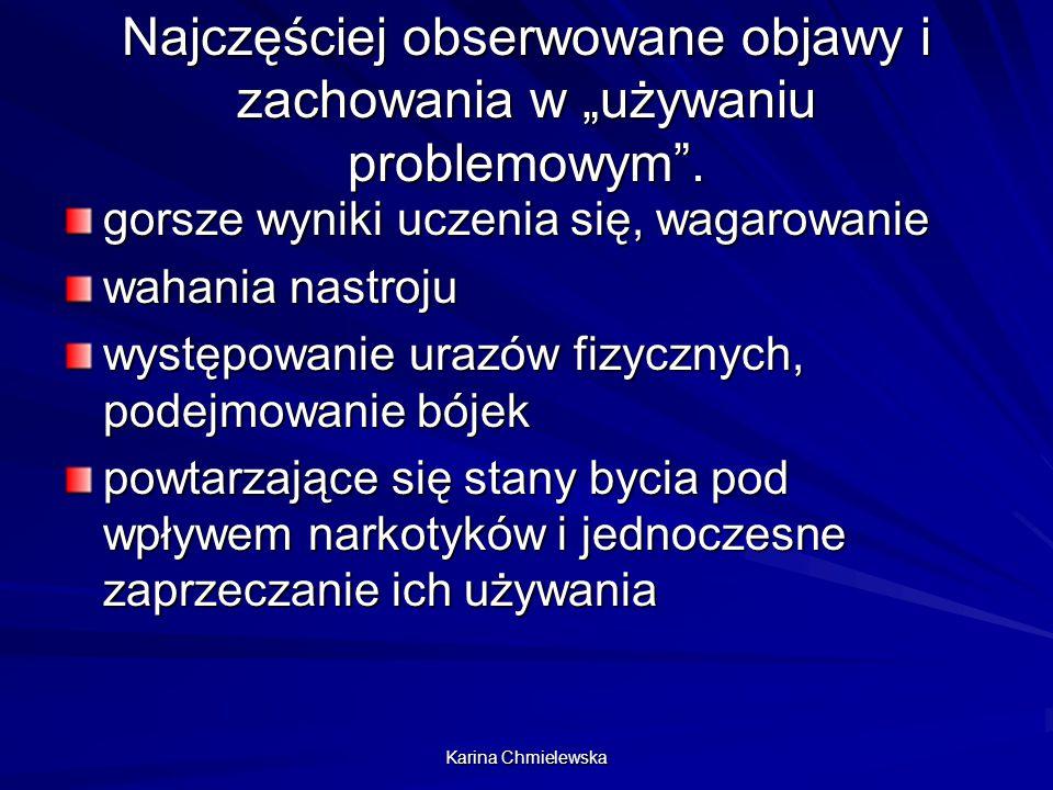 Karina Chmielewska Czynniki sprzyjające używaniu s.p.