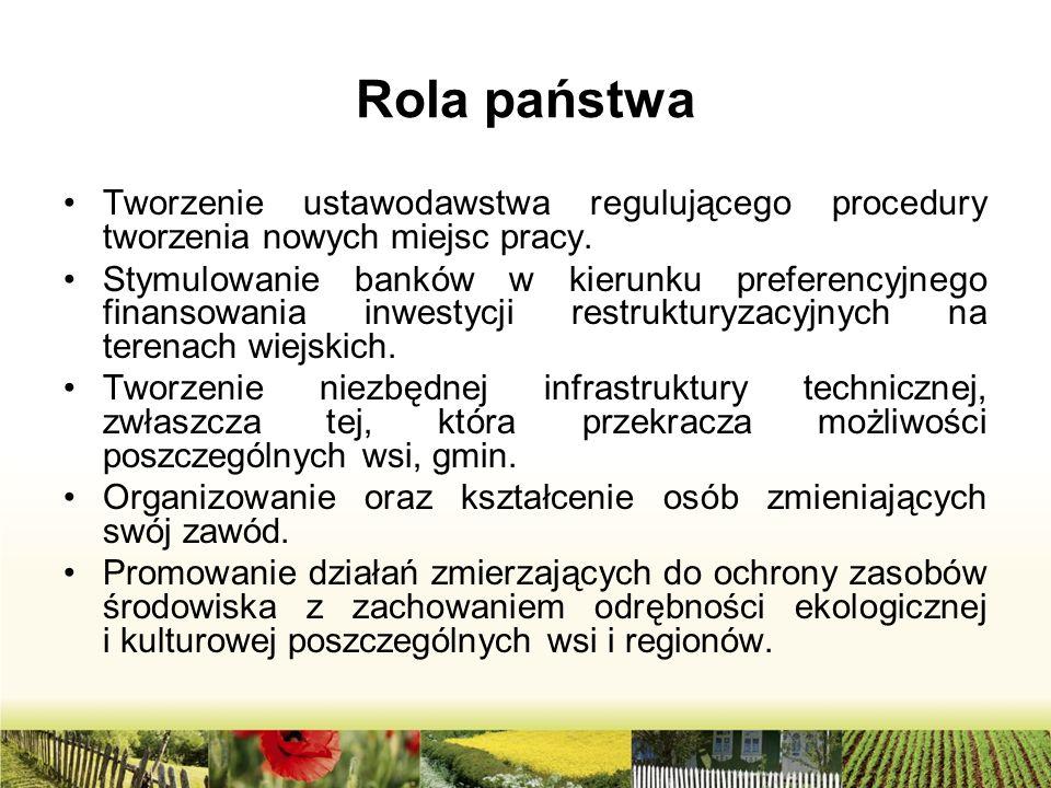 Rola państwa Tworzenie ustawodawstwa regulującego procedury tworzenia nowych miejsc pracy. Stymulowanie banków w kierunku preferencyjnego finansowania