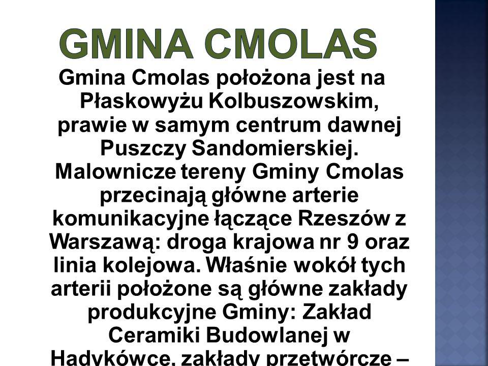 Gmina Cmolas położona jest na Płaskowyżu Kolbuszowskim, prawie w samym centrum dawnej Puszczy Sandomierskiej. Malownicze tereny Gminy Cmolas przecinaj