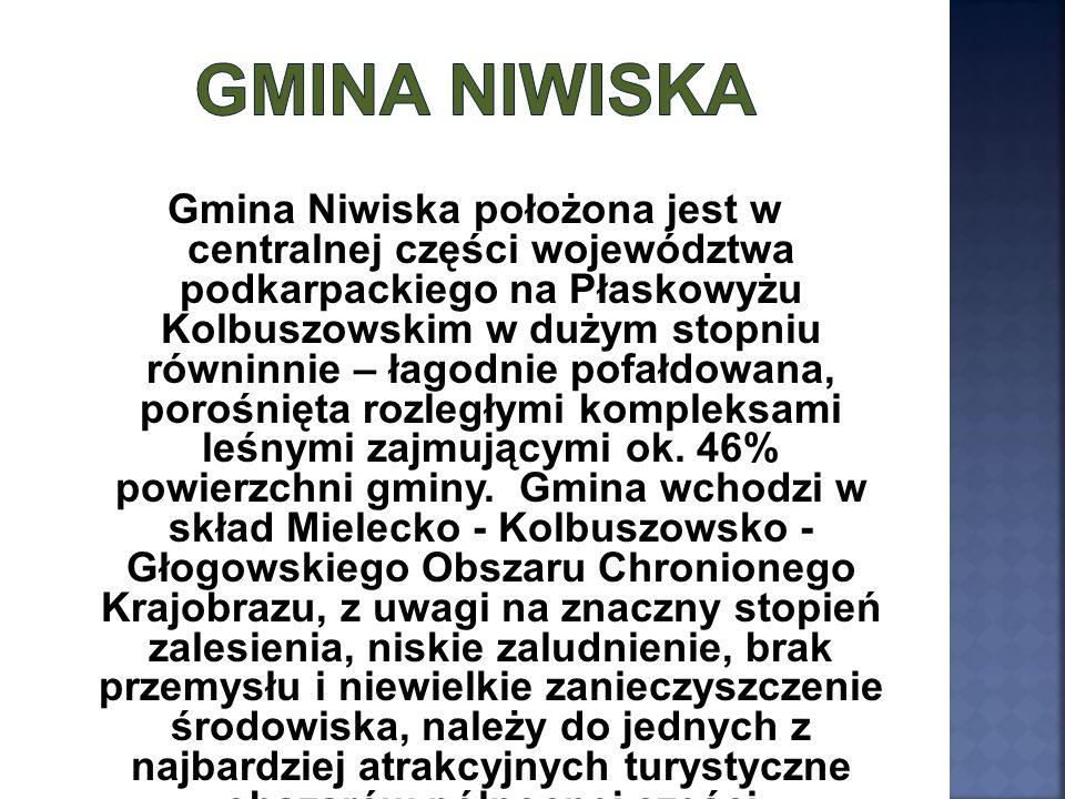 Gmina Niwiska położona jest w centralnej części województwa podkarpackiego na Płaskowyżu Kolbuszowskim w dużym stopniu równinnie – łagodnie pofałdowan