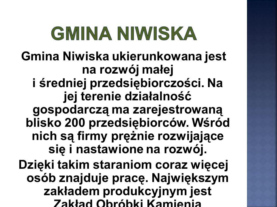 Gmina Niwiska ukierunkowana jest na rozwój małej i średniej przedsiębiorczości. Na jej terenie działalność gospodarczą ma zarejestrowaną blisko 200 pr