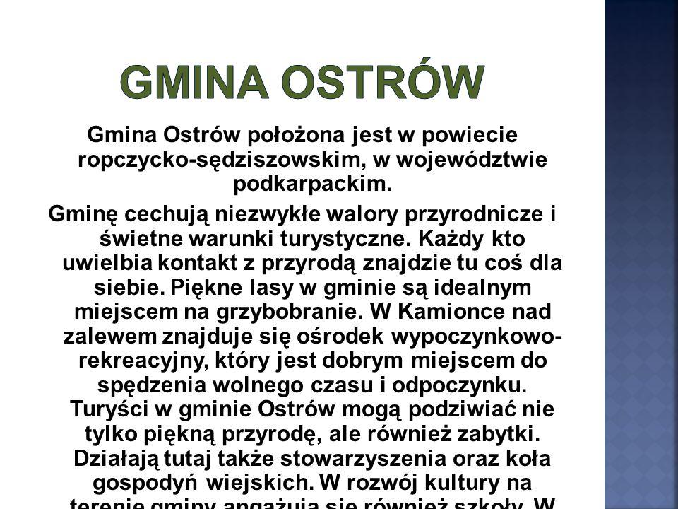 Gmina Ostrów położona jest w powiecie ropczycko-sędziszowskim, w województwie podkarpackim. Gminę cechują niezwykłe walory przyrodnicze i świetne waru