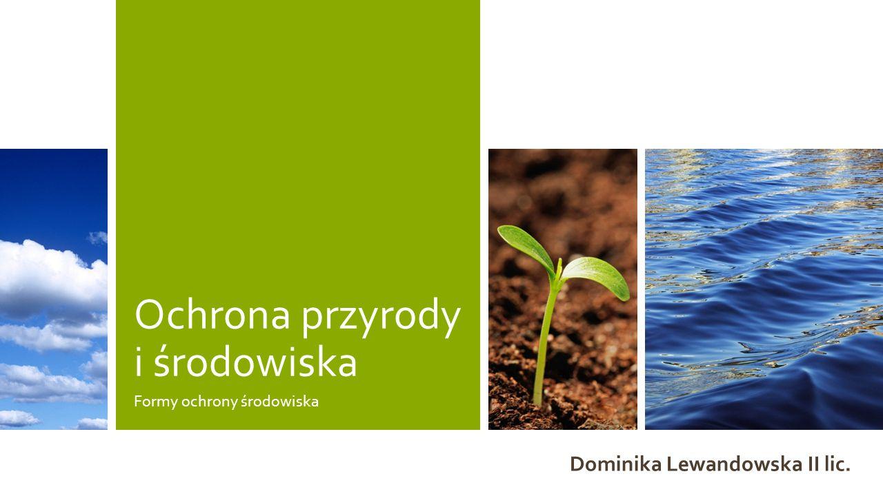 Ochrona przyrody i środowiska Formy ochrony środowiska Dominika Lewandowska II lic.