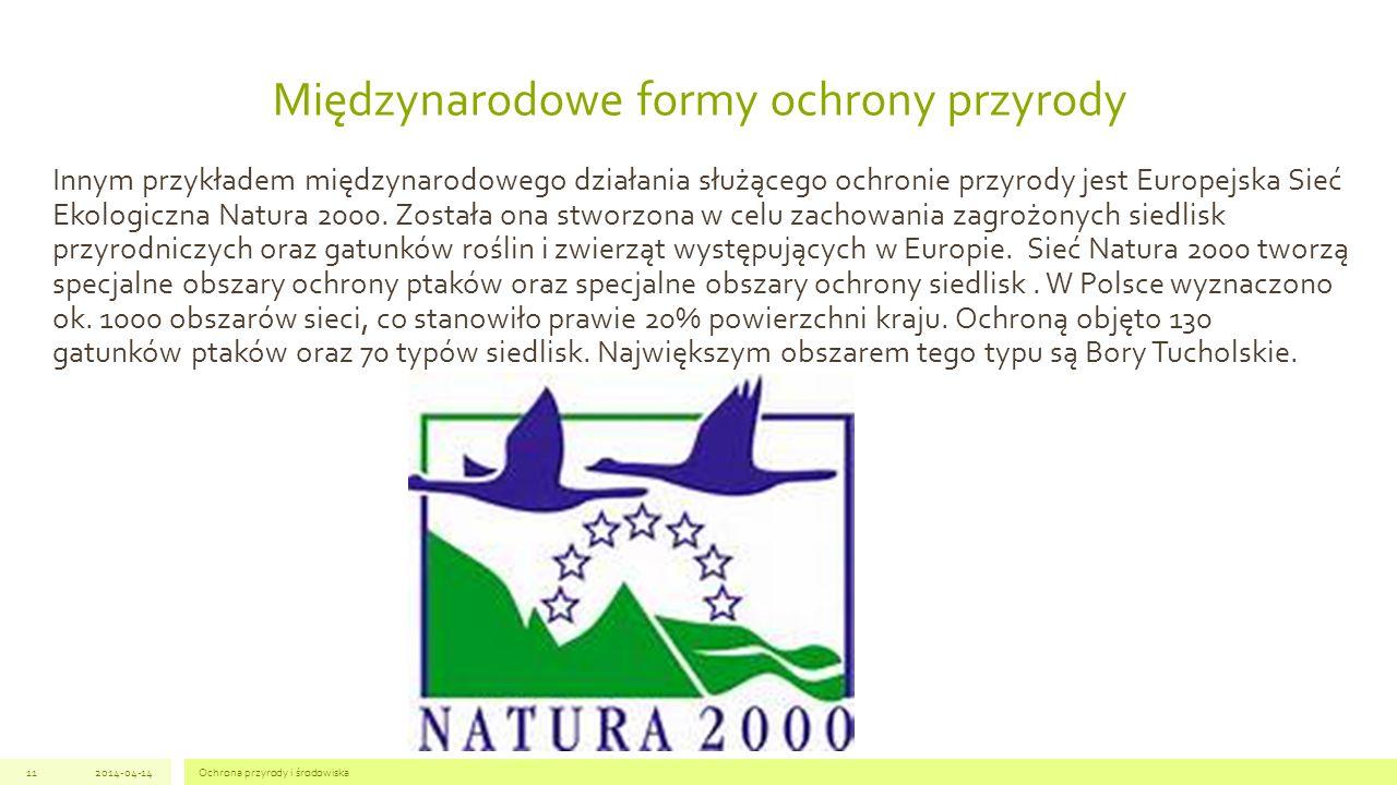 Innym przykładem międzynarodowego działania służącego ochronie przyrody jest Europejska Sieć Ekologiczna Natura 2000.