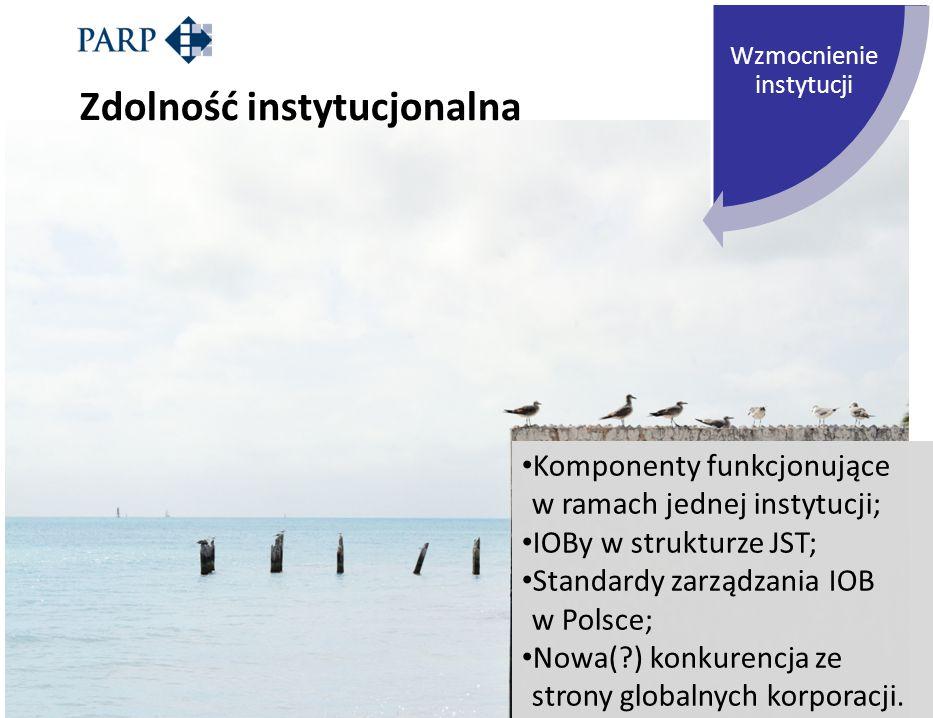 Wzmocnienie instytucji Zdolność instytucjonalna Komponenty funkcjonujące w ramach jednej instytucji; IOBy w strukturze JST; Standardy zarządzania IOB