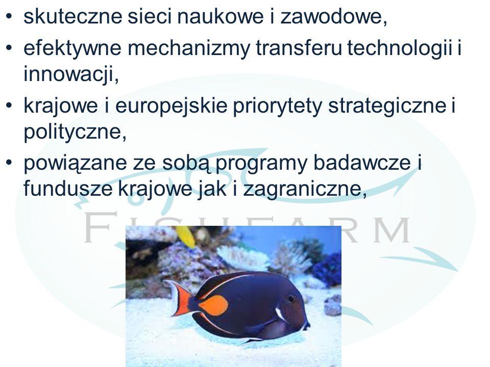 skuteczne sieci naukowe i zawodowe, efektywne mechanizmy transferu technologii i innowacji, krajowe i europejskie priorytety strategiczne i polityczne