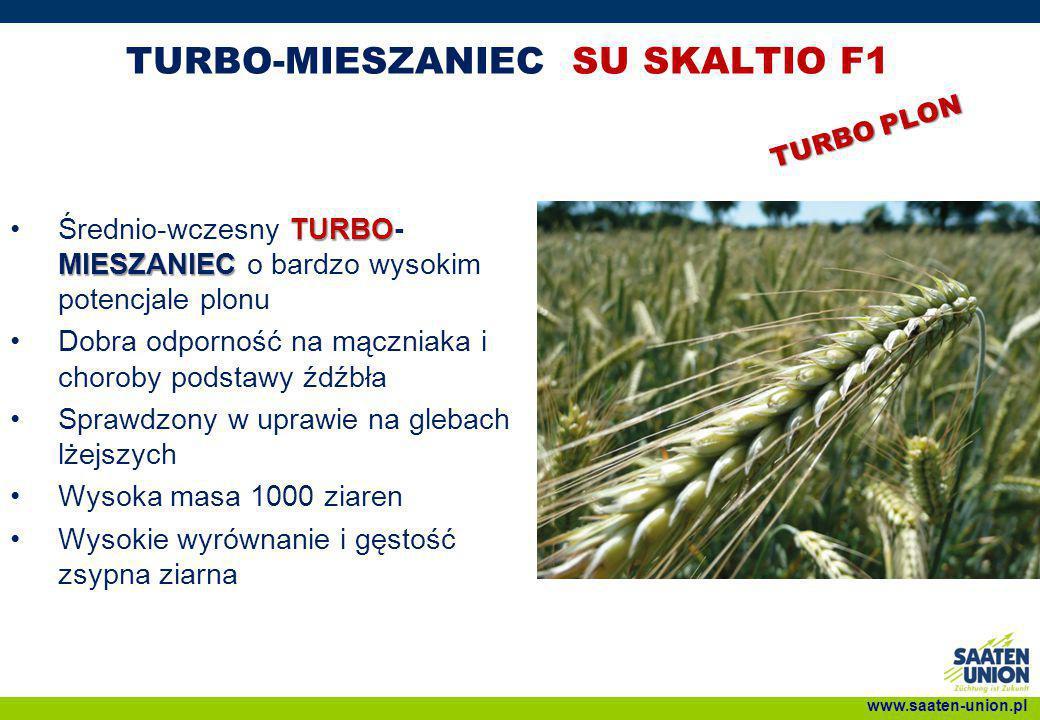 TURBO-MIESZANIEC SU SKALTIO F1 TURBO MIESZANIECŚrednio-wczesny TURBO- MIESZANIEC o bardzo wysokim potencjale plonu Dobra odporność na mączniaka i chor