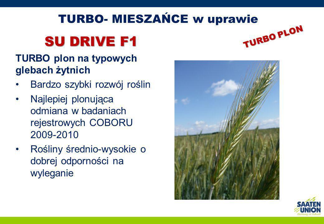 TURBO- MIESZAŃCE w uprawie SU DRIVE F1 TURBO plon na typowych glebach żytnich Bardzo szybki rozwój roślin Najlepiej plonująca odmiana w badaniach reje