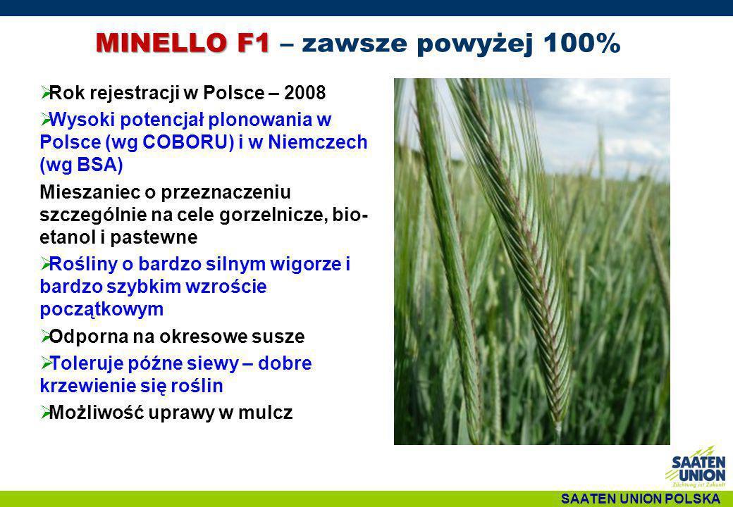 SAATEN UNION POLSKA MINELLO F1 MINELLO F1 – zawsze powyżej 100%  Rok rejestracji w Polsce – 2008  Wysoki potencjał plonowania w Polsce (wg COBORU) i