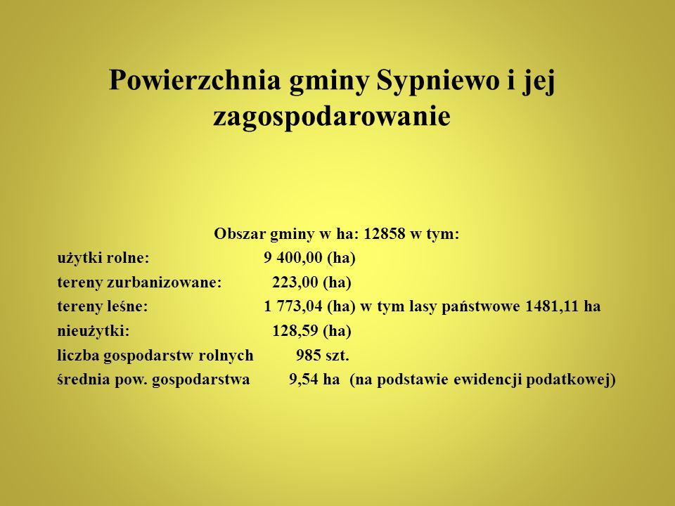 Powierzchnia gminy Sypniewo i jej zagospodarowanie Obszar gminy w ha: 12858 w tym: użytki rolne: 9 400,00 (ha) tereny zurbanizowane: 223,00 (ha) teren