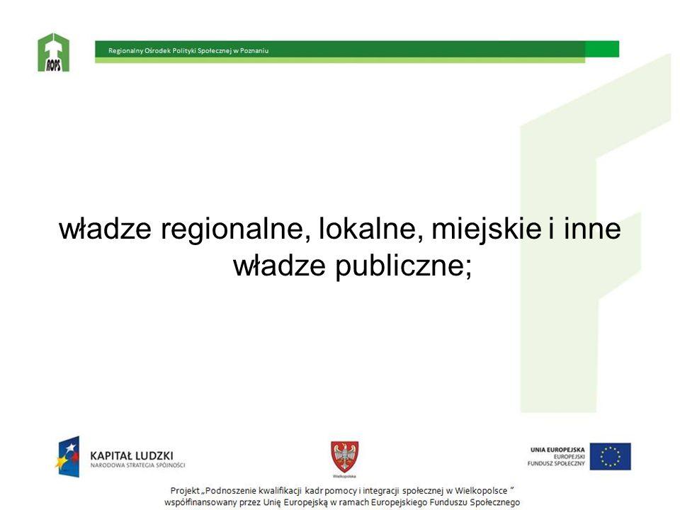 władze regionalne, lokalne, miejskie i inne władze publiczne;