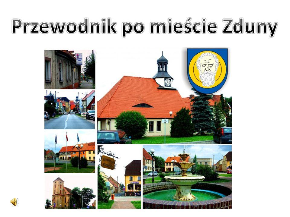 Zduny leżą w zachodniej części wysoczyzny kaliskiej w odległości 7 km od Krotoszyna i 39 km od Ostrowa Wlkp.