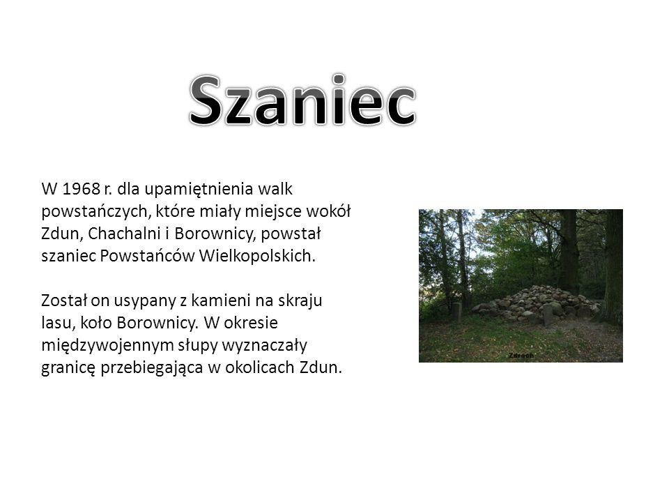 W 1968 r. dla upamiętnienia walk powstańczych, które miały miejsce wokół Zdun, Chachalni i Borownicy, powstał szaniec Powstańców Wielkopolskich. Zosta