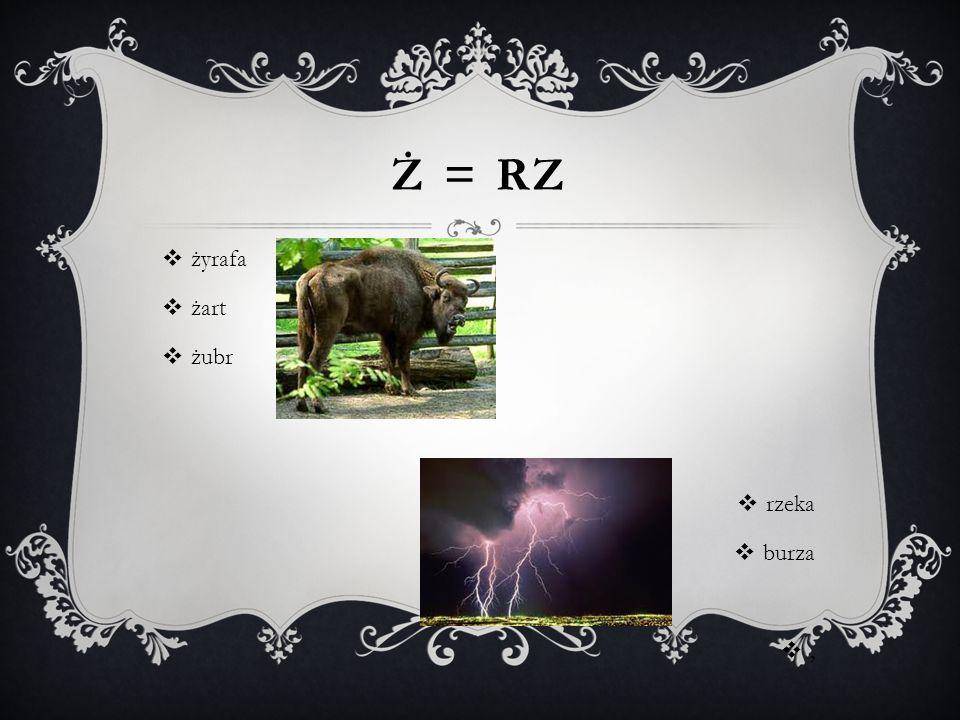 Ż = RZ  żyrafa  żart  żubr  rzeka  burza ,,