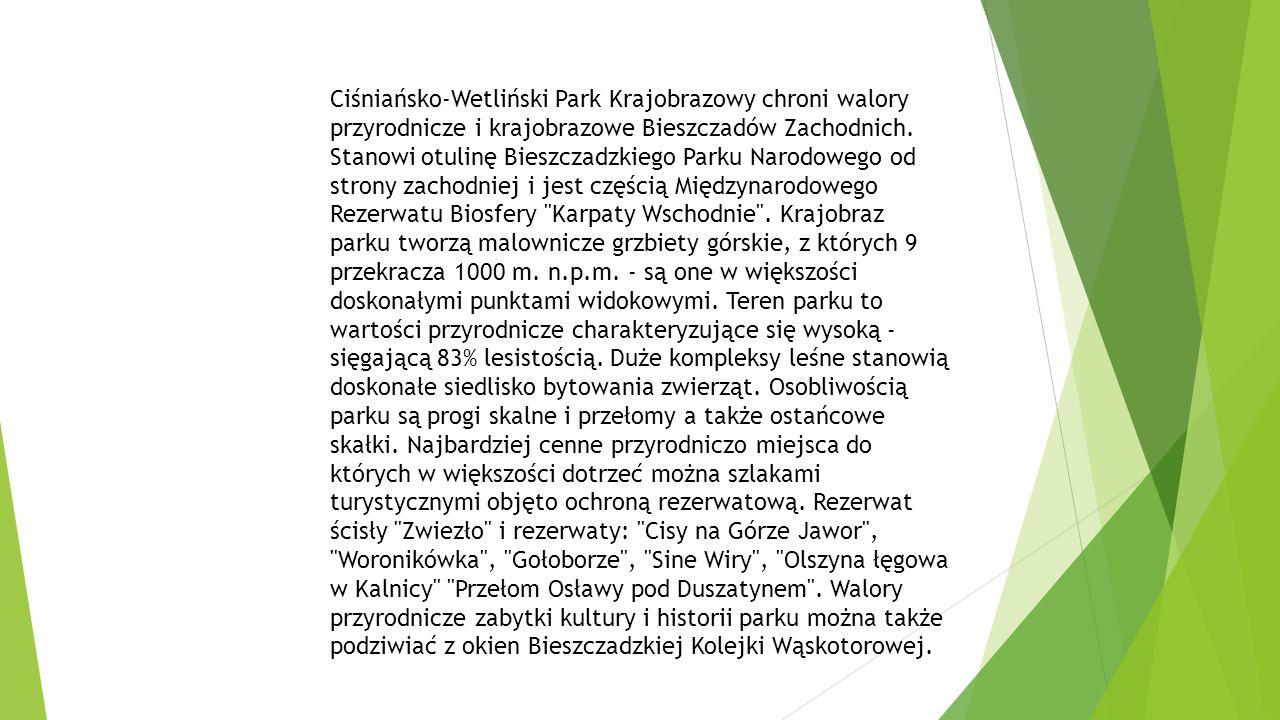 Ciśniańsko-Wetliński Park Krajobrazowy chroni walory przyrodnicze i krajobrazowe Bieszczadów Zachodnich.