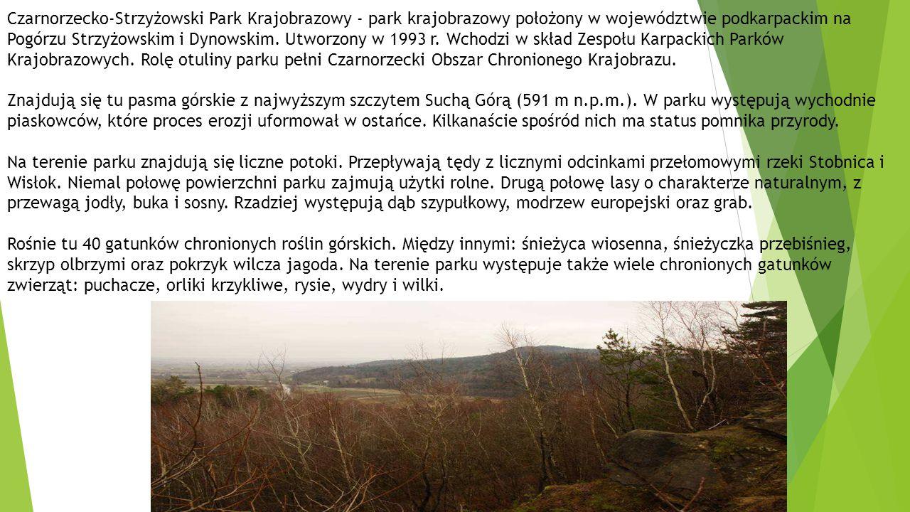 Czarnorzecko-Strzyżowski Park Krajobrazowy - park krajobrazowy położony w województwie podkarpackim na Pogórzu Strzyżowskim i Dynowskim.