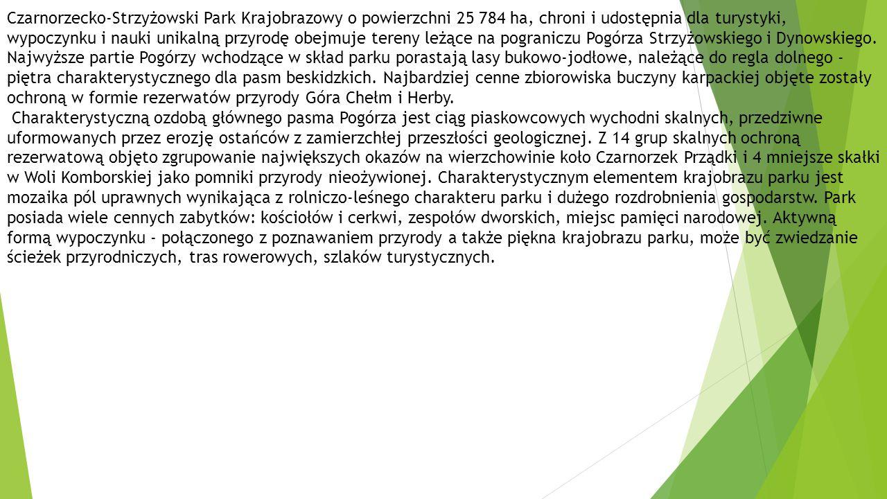 Czarnorzecko-Strzyżowski Park Krajobrazowy o powierzchni 25 784 ha, chroni i udostępnia dla turystyki, wypoczynku i nauki unikalną przyrodę obejmuje tereny leżące na pograniczu Pogórza Strzyżowskiego i Dynowskiego.