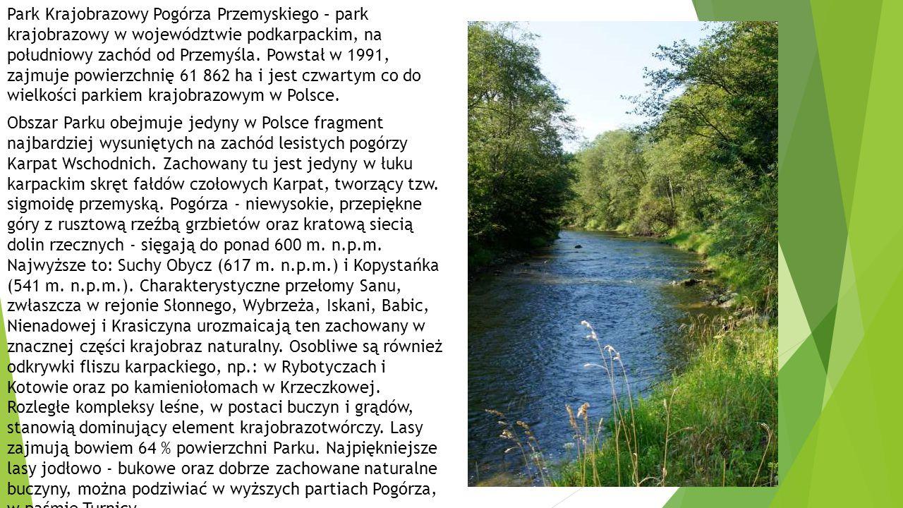 Park Krajobrazowy Pogórza Przemyskiego – park krajobrazowy w województwie podkarpackim, na południowy zachód od Przemyśla.